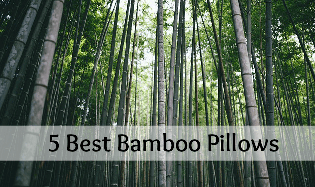 Best bamboo pillow header image